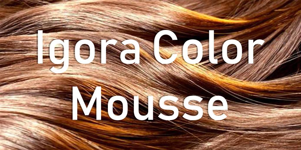 carta color igora color mousse.jpg